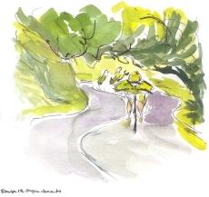 Sagan descends through vivid green trees