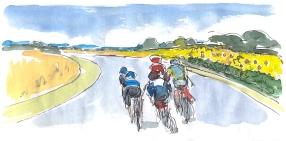 Cycling art, tour de france, sunflowers