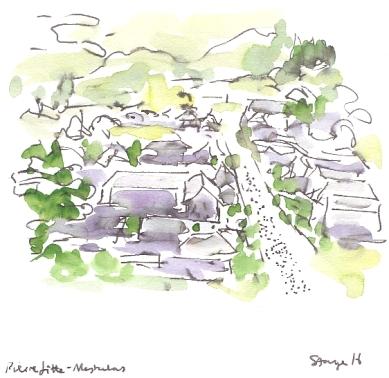 The grey rooftops of Pierrefitte-Nestalas