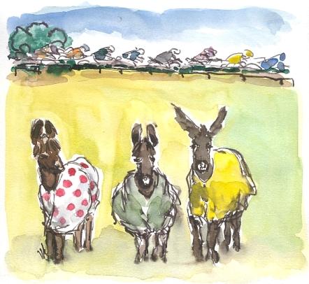 cycling art, tour de france, donkeys