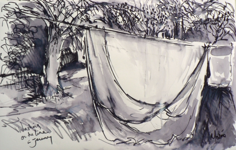 Washing on the line in January - Life-drawing, 11.30am - felt-pen and water wash