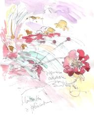 Anemones and montbretia