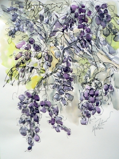 Wisteria magic, by Maxine Dodd