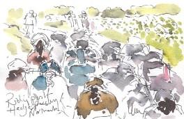 Women's Tour: Riding past the hedge parsley