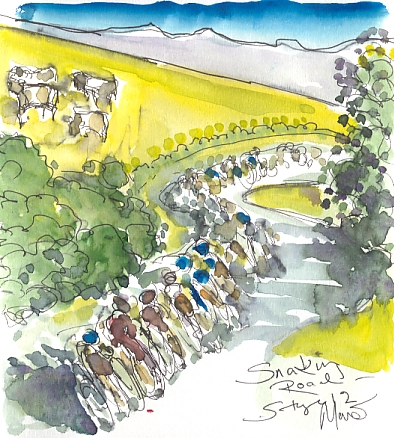 Cycling art, Tour de France, watercolour pen and ink painting, Snaking road by Maxine Dodd