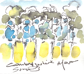 Cycling art, Tour de France, watercolour pen and ink painting, Stage 3, Cambridgeshire! by Maxine Dodd
