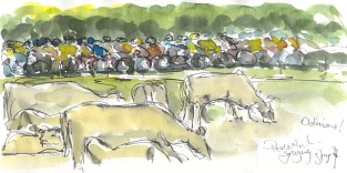 Cycling art, Tour de France, watercolour pen and ink painting, Oblivious! by Maxine Dodd