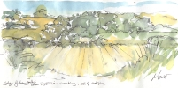 Maxine Dodd, painting, field