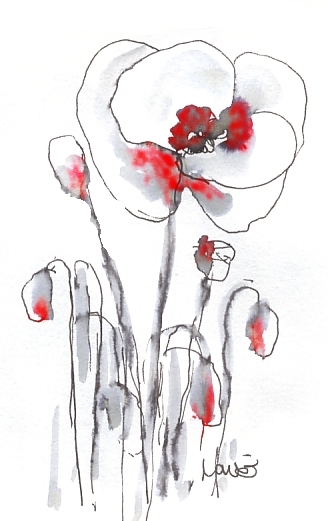 Maxine Dodd, Poppies, Lest we forget