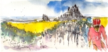 Yellow fields of Whitby, by Maxine Dodd