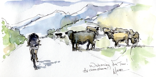 Cycling art, Tour de France, Watercolour painting Welcoming the Tour - a close shave! by Maxine Dodd