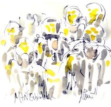 MTN Qhubeka, Stage 1, by Maxine Dodd