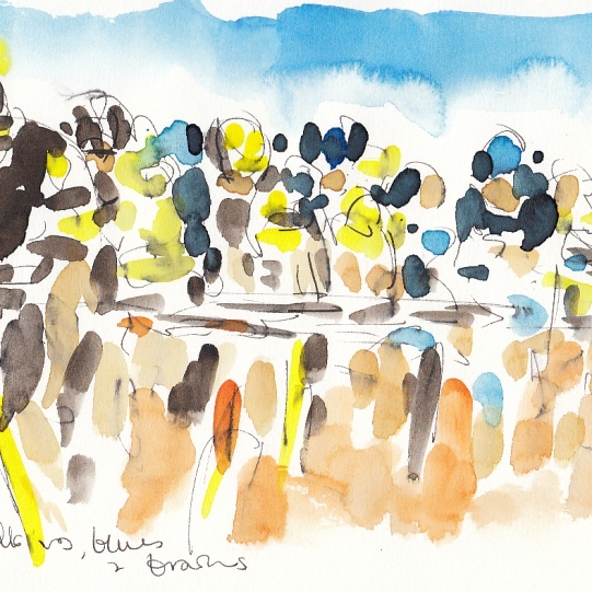 Tour de France, Cycling art, Yellows, blues and browns by Maxine Dodd