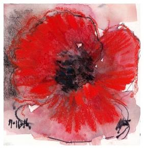 Remembrance Poppy, Maxine Dodd