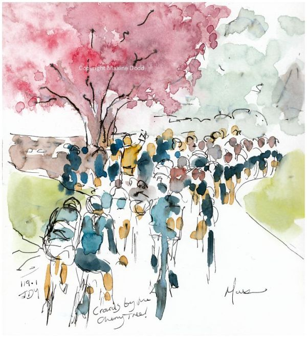 cycling art, Women's race Tour de Yorkshire