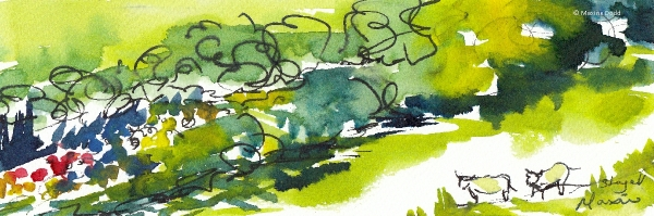 Beyond the hedge! watercolour, pen and ink by Maxine Dodd