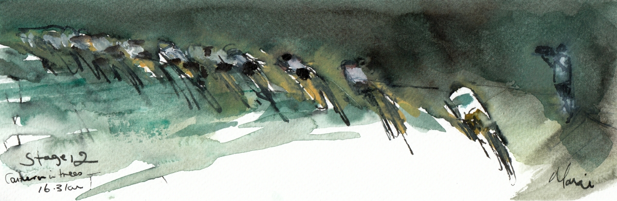 Camera on the right, watercolour, pen and ink, by Maxine Dodd