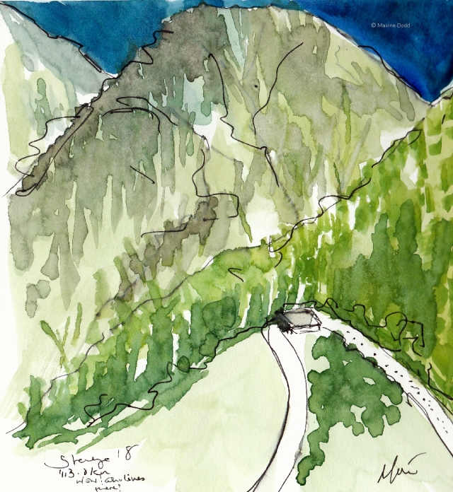 Wow! Watercolour, pen and ink by Maxine Dodd