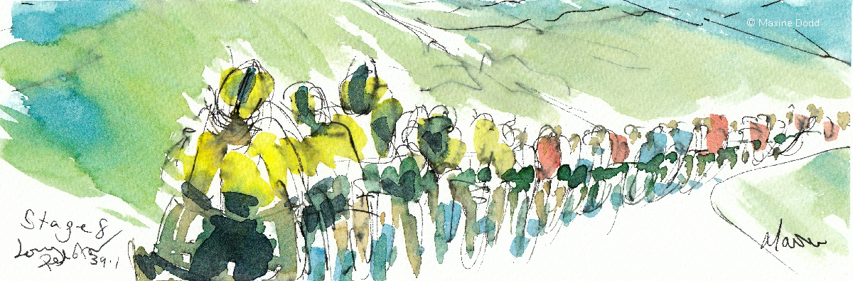 Stage 8, A long peloton, watercolour, pen and ink, by Maxine Dodd