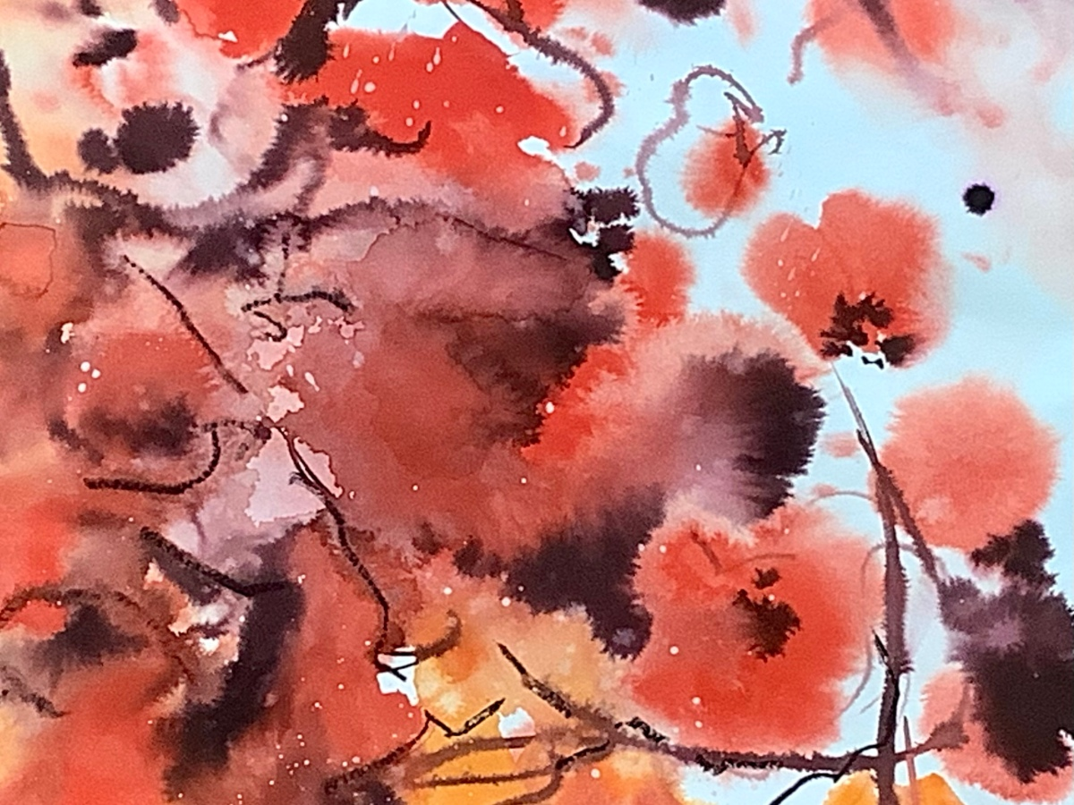 Barbed Poppies - Watercolour, ink and charcoal by Maxine Dodd
